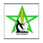 Logo-ENA-de-Meknas