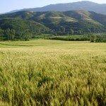 Paysage de montagne en Albanie