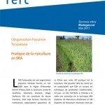 MDG Pratique de la riziculture en SRA