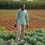 Fert Burkina Fugcom