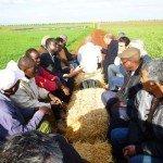 MRC_2013_rencontre_marocains-maliens-(1)