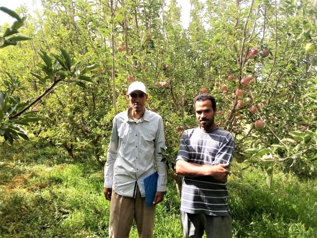 Deux agriculteurs membres de la coopérative de Tamknassete